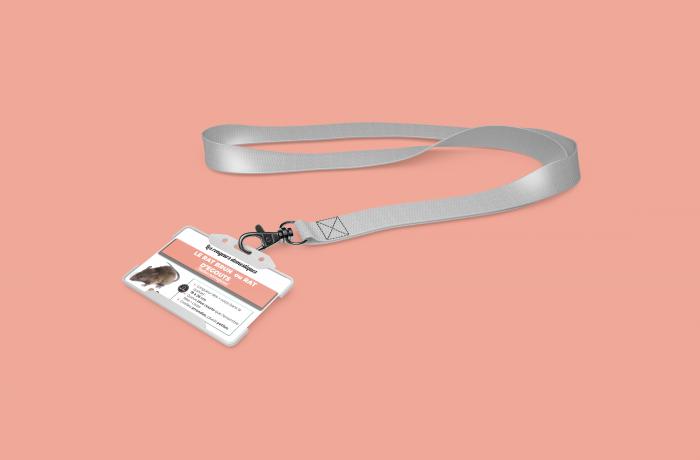 Fiche d'identification – Rat Brun